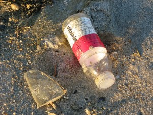 Vitamin Water bottle: OK if YOU brought it, gross if the lake did.