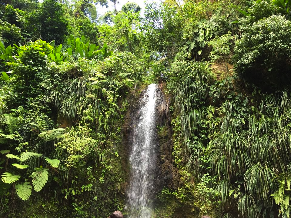 St. Lucia Toraille Waterfall
