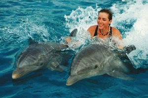 Waikoloa Beach House Rentals, Swim with Dolphins