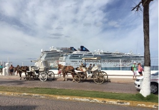 Horse drawn Buggy Rides in Cozumel